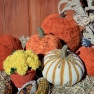pumpkins_500_medium